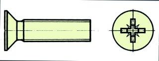 Nylonschr. SK mit Kreuzsch M4X40 (VE=10St.)